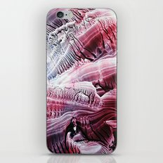 Fossils iPhone & iPod Skin