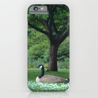 A Quiet Moment iPhone 6 Slim Case