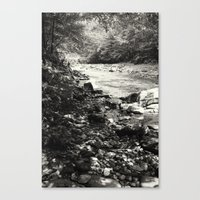 Speckled Creekside Canvas Print