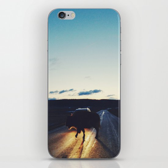 Bison in the Headlights iPhone & iPod Skin