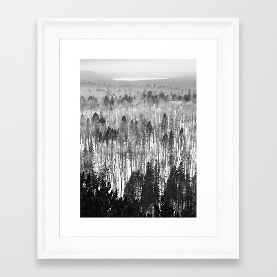 Algonquin Park in Winter, The Lookout Trail Framed Art Print