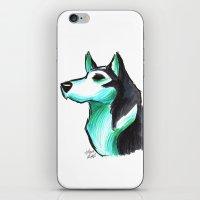 Brush Breeds-Siberian Husky iPhone & iPod Skin