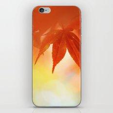 Autumnal tints iPhone & iPod Skin