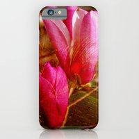 iPhone & iPod Case featuring Magnolias by Susanne Van Hulst