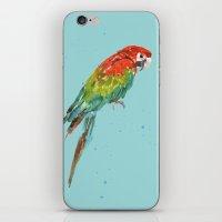 PARROT PERK  iPhone & iPod Skin