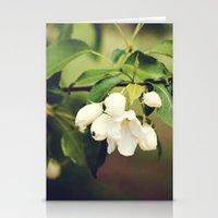 spring blossom. Stationery Cards