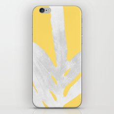 Ferns and Tangerines iPhone & iPod Skin