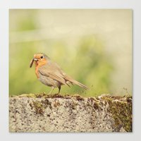 What's for breakfast?  Canvas Print