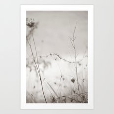 Dreamy Meadow With Queen… Art Print