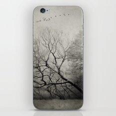 Long way home iPhone & iPod Skin