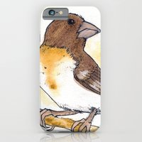 iPhone & iPod Case featuring Yellow Rose-breasted Grosbeak by Yvonne Valenza