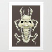 Insect Skull Art Print