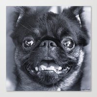 I Am Cute And I Know It Canvas Print
