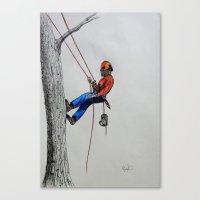 Arborist ,Tree Surgeon using stihl 020T chainsaw,husqvarna, Canvas Print