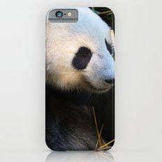 Panda Nap iPhone 6 Slim Case