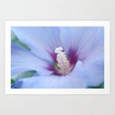 Soft Purple Hibiscus Flower #1 #art #society6 Art Print