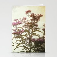 Summer Nature Stationery Cards