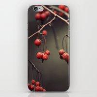 Almost Winter iPhone & iPod Skin