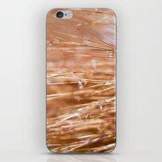 Fire Grass iPhone & iPod Skin