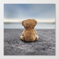 Teddy Blue Canvas Print