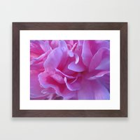 petals pink Framed Art Print