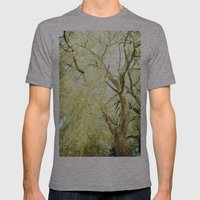 Willow Tree Mens Fitted Tee Athletic Grey SMALL