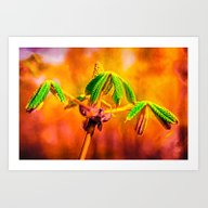 Dance Of Fire Art Print