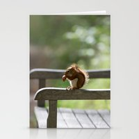 Red Squirrel Snack Time Stationery Cards