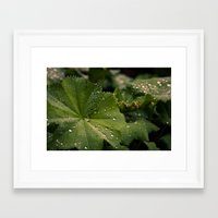 Droplets II Framed Art Print