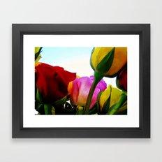 Colorful Roses Framed Art Print