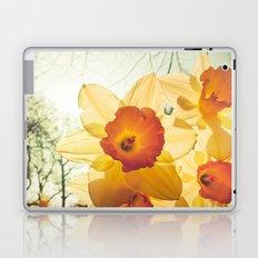 Daffodil Laptop & iPad Skin