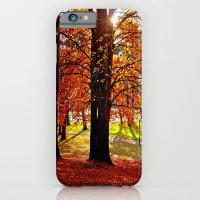 Autumn sunshine iPhone 6 Slim Case
