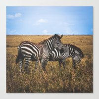 Masai Zebra Canvas Print
