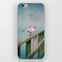 Hy :-) iPhone & iPod Skin