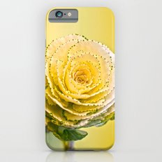 Cabbage Rose  Slim Case iPhone 6s