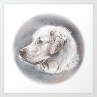Golden Retriever Dog Dra… Art Print