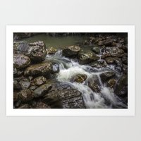 Rainforest Falls Art Print