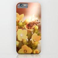 Honey Herder 2 iPhone 6 Slim Case