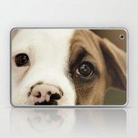 Boxer Nose Laptop & iPad Skin