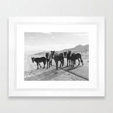 Cold Creek Horse Crew Framed Art Print