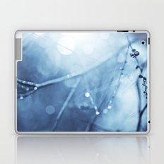 FairyMist Laptop & iPad Skin
