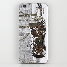 Steel and Snow iPhone & iPod Skin