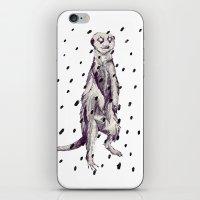 Meerkat In The Rain iPhone & iPod Skin