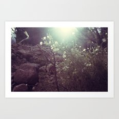 Magical Beings - New Mexico Art Print