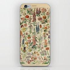 Fleurs A / Le Larousse pour tous iPhone & iPod Skin