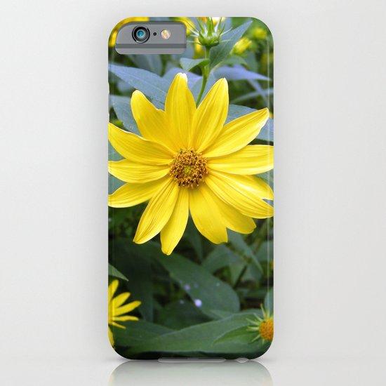 Woodland Sunflowers iPhone & iPod Case