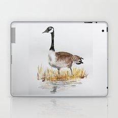 Bernache du Canada (Canada Goose) Laptop & iPad Skin
