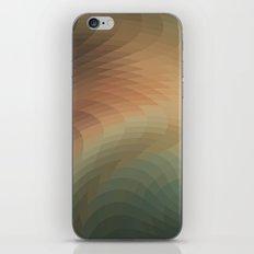 The Swing iPhone & iPod Skin
