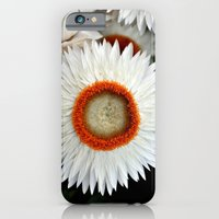 flower iPhone 6 Slim Case