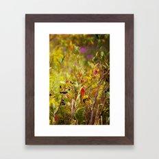 Fall Field Framed Art Print